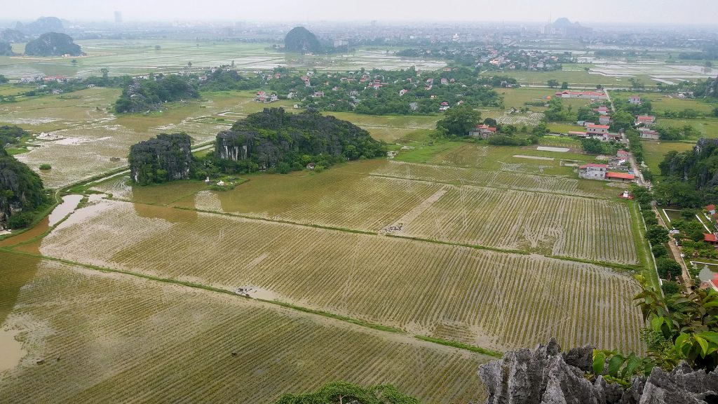 the view from Mua Cave, Ninh Binh on a wet day